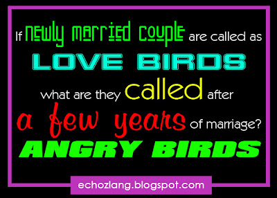 If newly married couple are called love birds. What do the called after a few years of marriage?