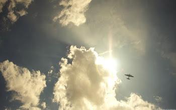 总有一天,我能飞。
