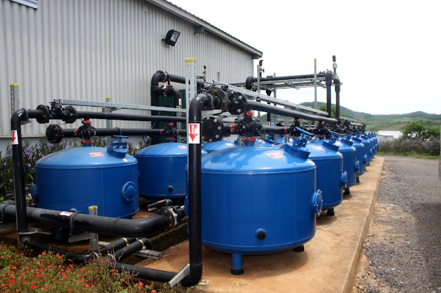 Xử lý nước cho bò sữa tại Thanh Hóa