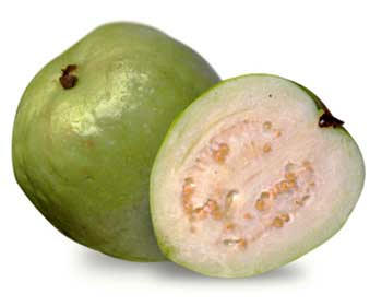Reproductive Health and Fetal: Guava, Lower Sugar Levels, Cholesterol & Blood Pressure