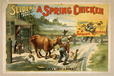 art, classic posters, free download, graphic design, movies, retro prints, theater, vintage, vintage posters, Selden's Funny Farce, A Spring Chicken - Vintage Theater Comedy Poster
