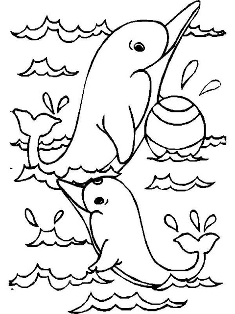 animal coloring pages dolphin free coloring sheet for kids cartoon
