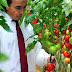 Article : GREEK HORTICULTURE SECTOR IN CRISIS - OPPORTUNITY OR THREAT?