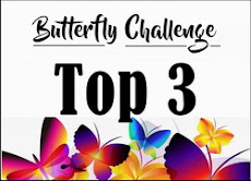 Top 3 at Butterfly Challenge!