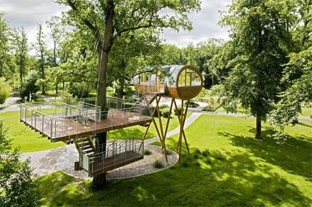 Cabin Tree House [lensaglobe.com]