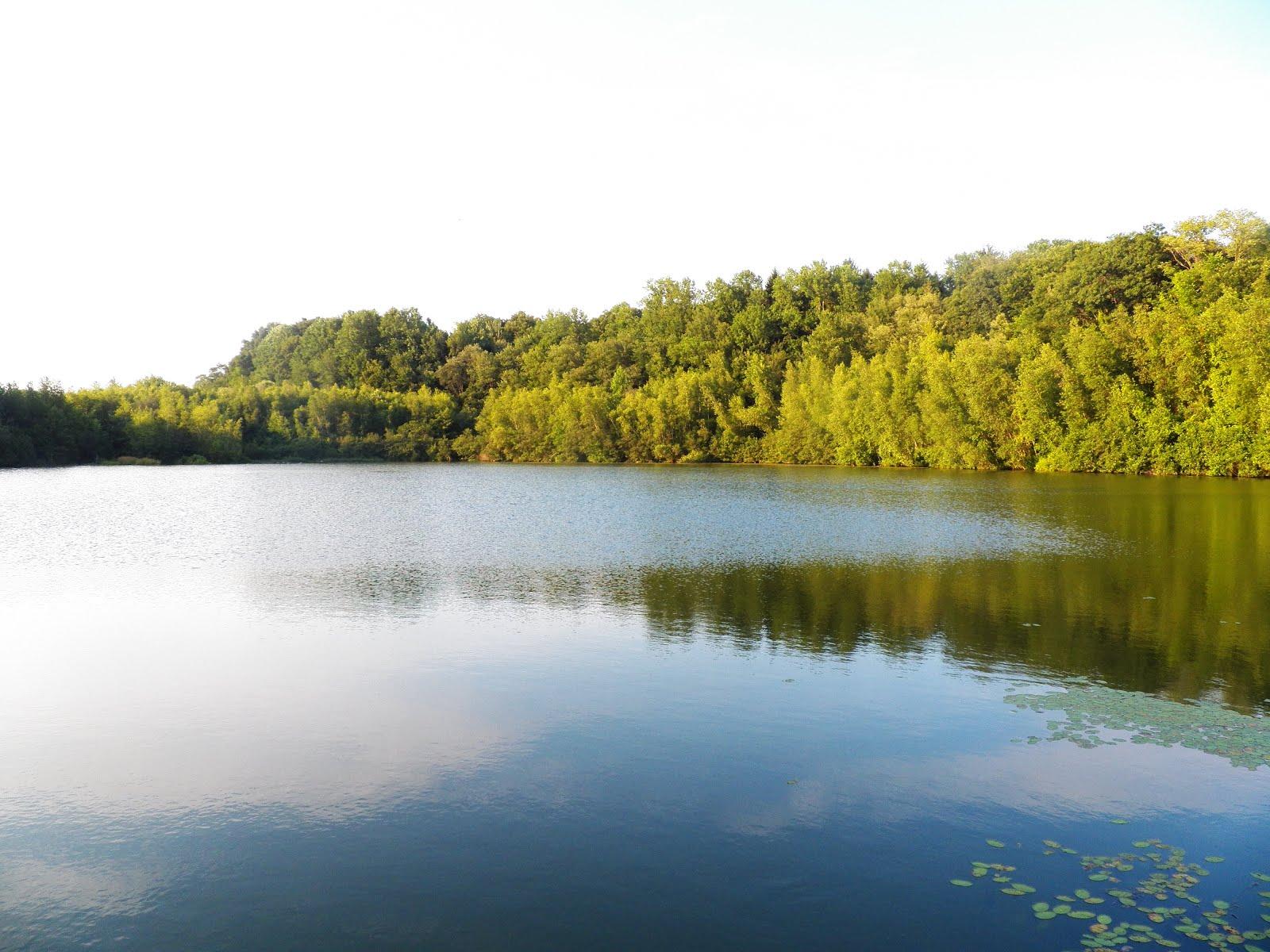 Bell Pond
