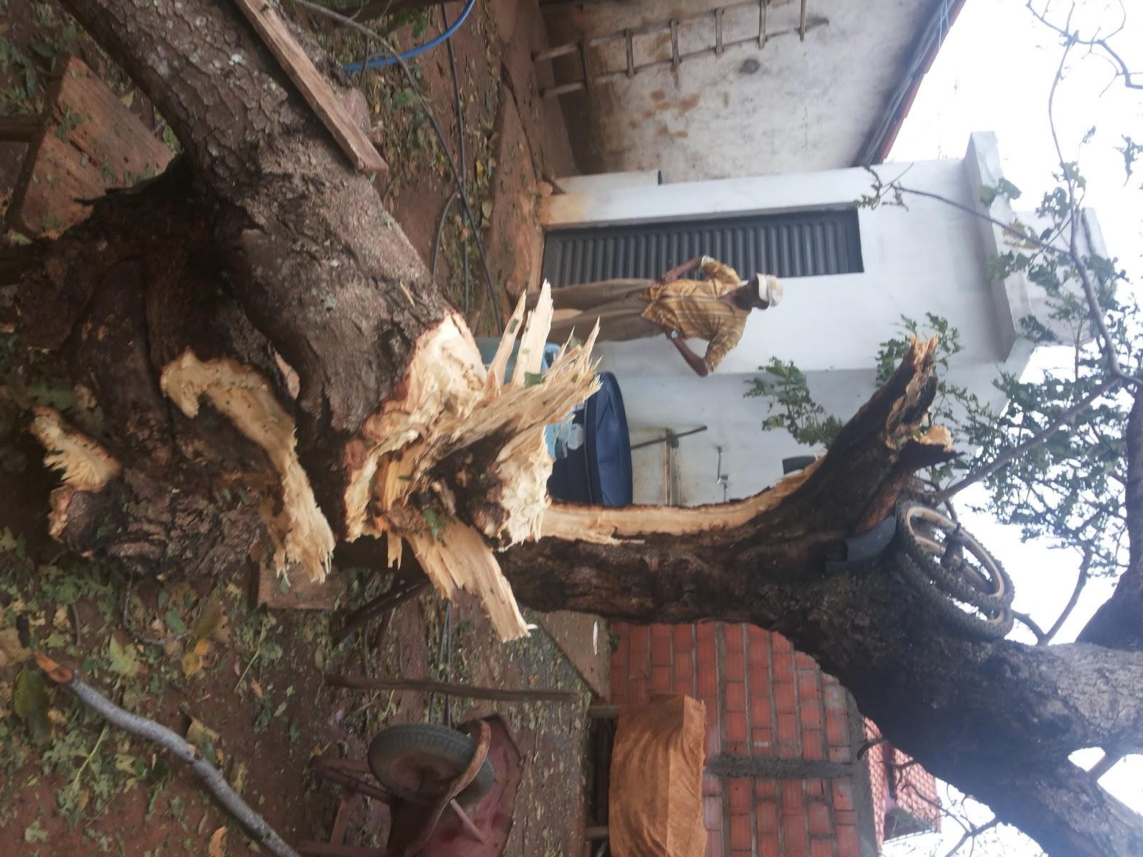 Vale do Jequitinhonha - Blog do Banu: Capelinha: Chuva de ...