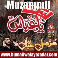 http://ishqehaider.blogspot.com/2013/11/muzammil-abbas-dasta-e-hussainia-nohay.html