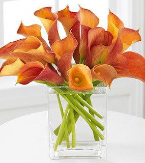 Pretty Birthday Flowers Of The Month