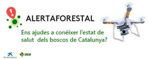 Alerta Forestal
