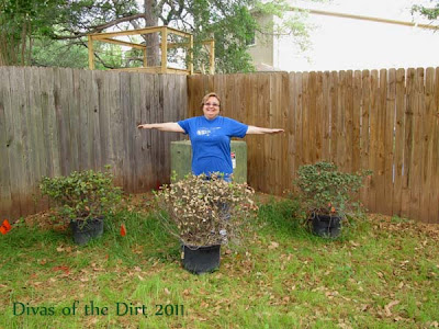 Divasofthedirt,sophia impersonates a shrub