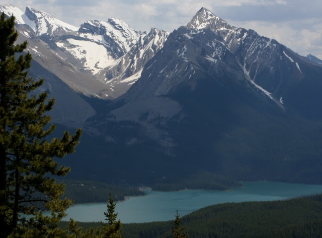 Bald Hills (Parque Nacional Jasper)