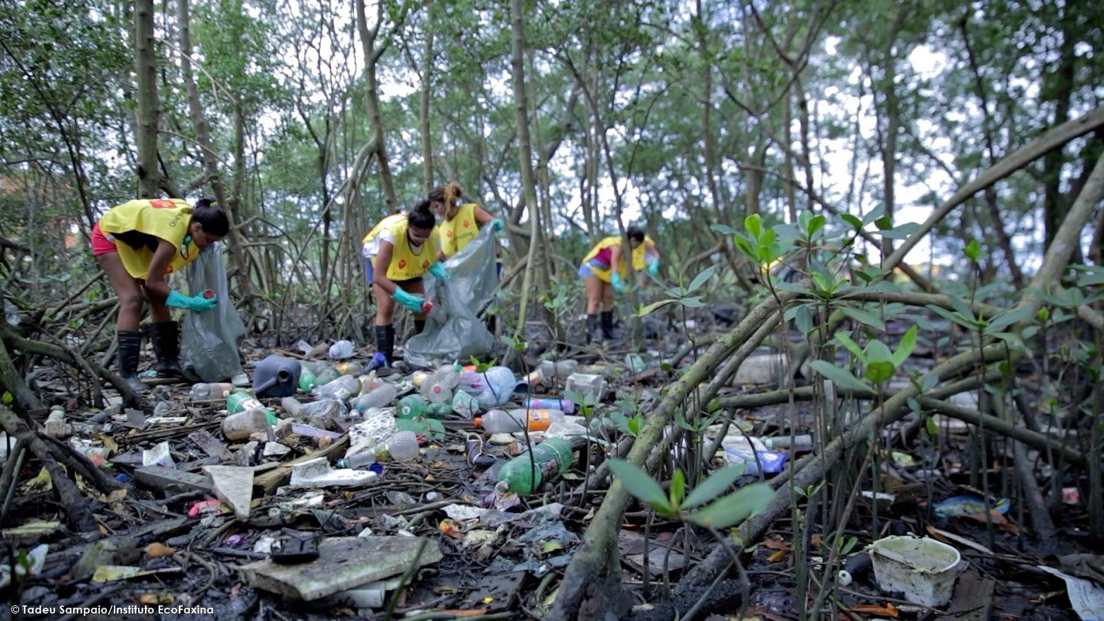 Sopa de plástico: mais de 300 espécies de animais marinhos confundem plástico com alimentos. Um recente estudo apontou que cerca de 90% das aves marinhas já ingeriram plástico.