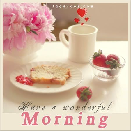 have a wonderful morning messages