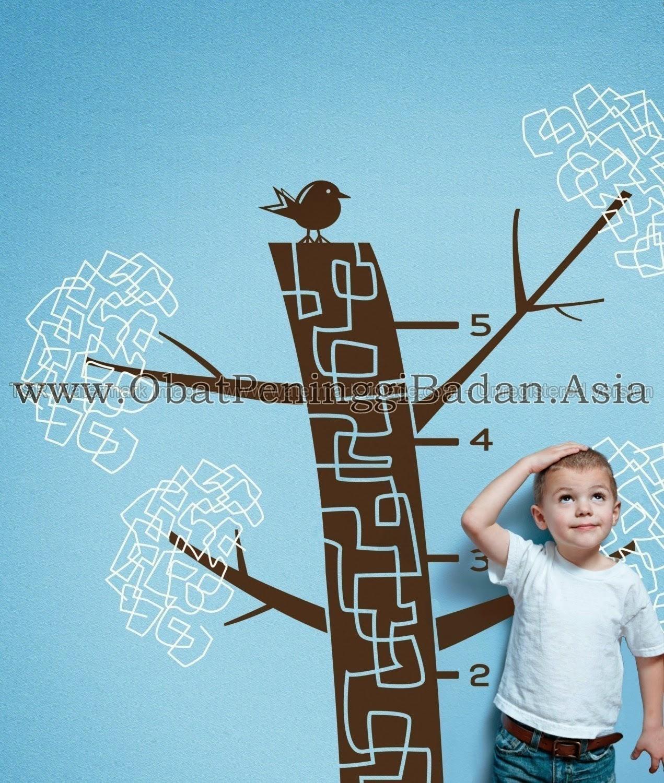 Faktor Mempengaruhi Tinggi Badan Anak Indonesia Kurang Tinggi Pendek Peninggi Badan Anak Vitamin Anak Mengukur Tiens Tianshi Susu Kalsium Multivitamin Pertumbuhan Meninggikan Anak Laki Perempuan