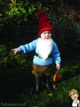 Very Cute Toddlers Garden Gnome Halloween Costume