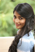 Pooja hegde gorgeous photo shoot-thumbnail-26