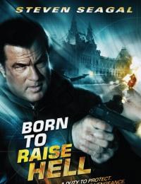 Born to Raise Hell   Bmovies