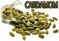 agri commdity tips, Free Agri Tips, mcx cardamom, Future Trading Tips, free agri calls