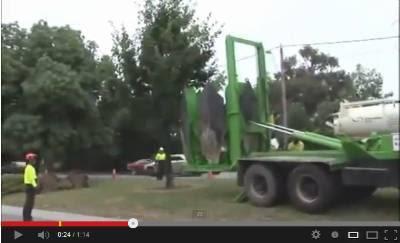 بالفيديو .. اغرب مقطع ستراه وهو نقل شجرة من مكانها بالكامل  - بلدوزر - ونش - bulldozer