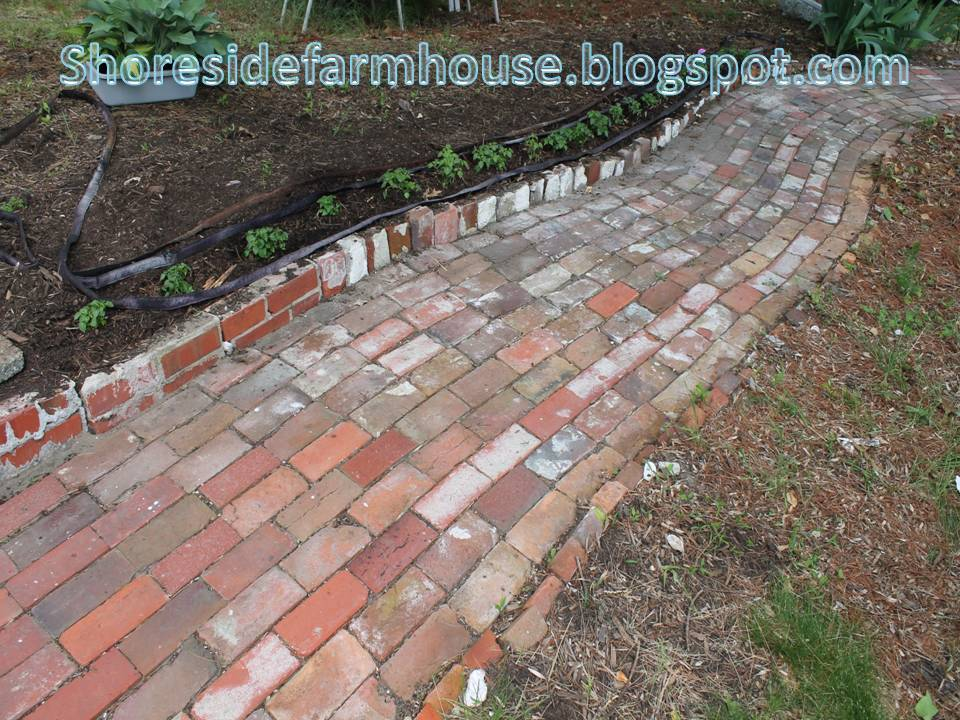 Brick walkway installation brick path farm house shore for Brick sidewalk edging