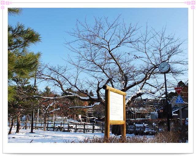 北海道函館-女子修道院
