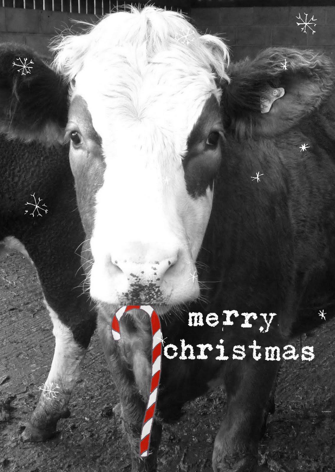 Megan Elsa Parry Christmas Card Prices