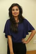 Bhanu sri mehra sizzling photos-thumbnail-16