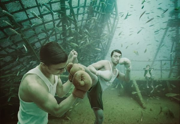 Life Below The Surface Photography