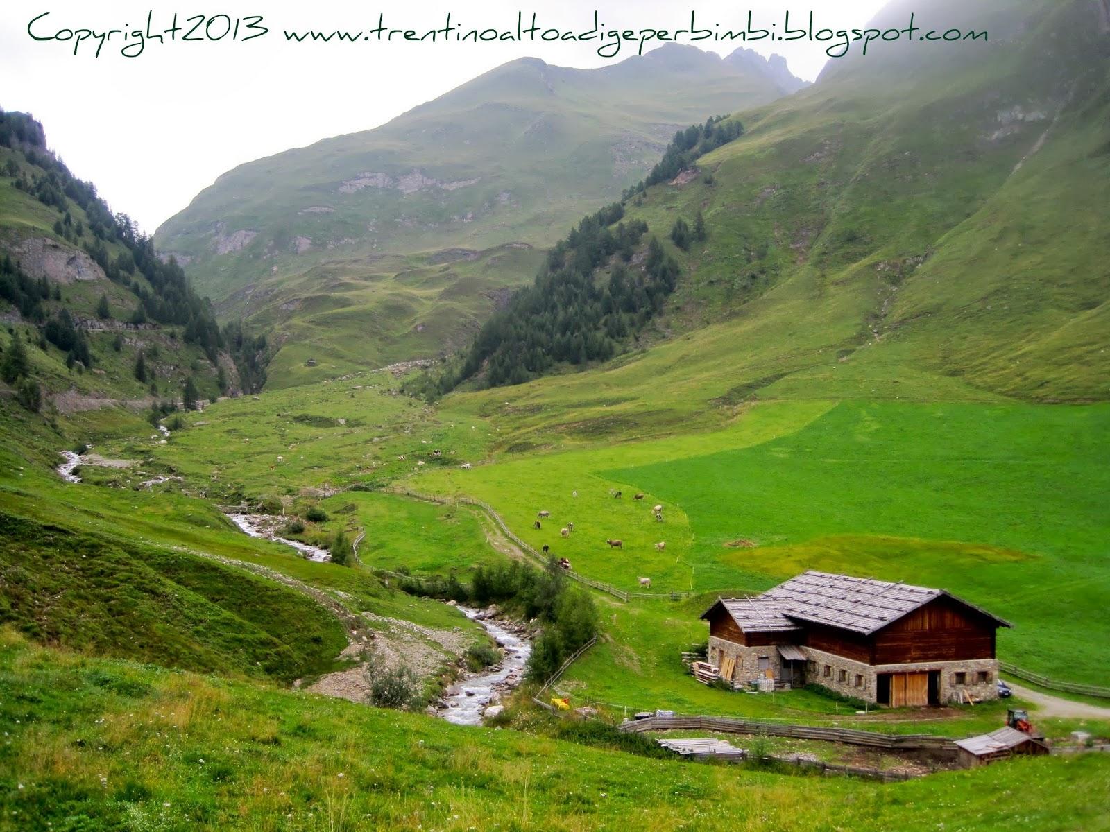 Trentino alto adige per bimbi malga fane gatterhuette e for Mobilificio trentino alto adige