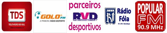 PARCEIROS DA RVD