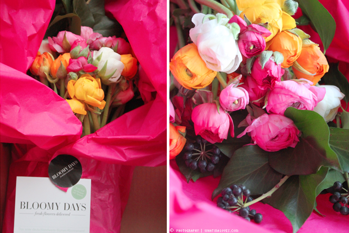 http://2.bp.blogspot.com/-Ain_Xd7-iqs/UVxPU-86G3I/AAAAAAAABxg/FL7Xd7S9GRU/s1600/flowers1.jpg