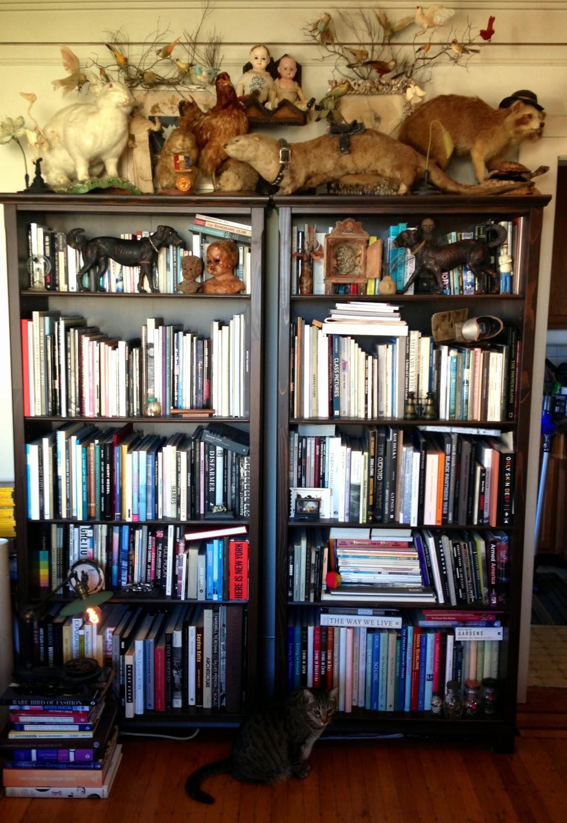 """TYWKIWDBI (""""Tai-Wiki-Widbee""""): Stan B's bookcases"""