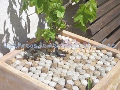 Tapones de corcho para proteger la tierra de nuestras macetas