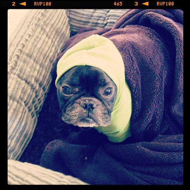 LeRoy in his hoody
