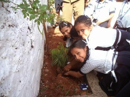 the significance of van mahotsav for Prize distribution marks culmination of van mahotsav celebration: lg calls upon islanders to preserve isles' rich biodiversity for future generations.