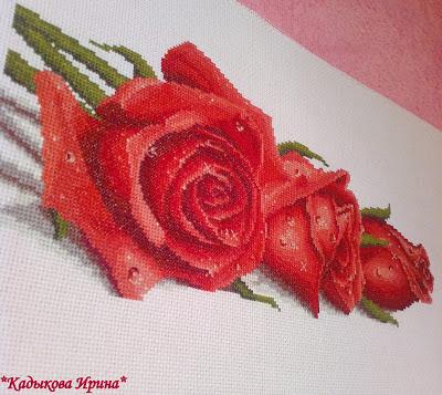 Вышивка роза с росой на