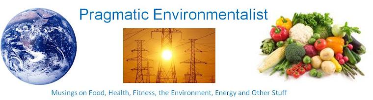 Pragmatic Environmentalist