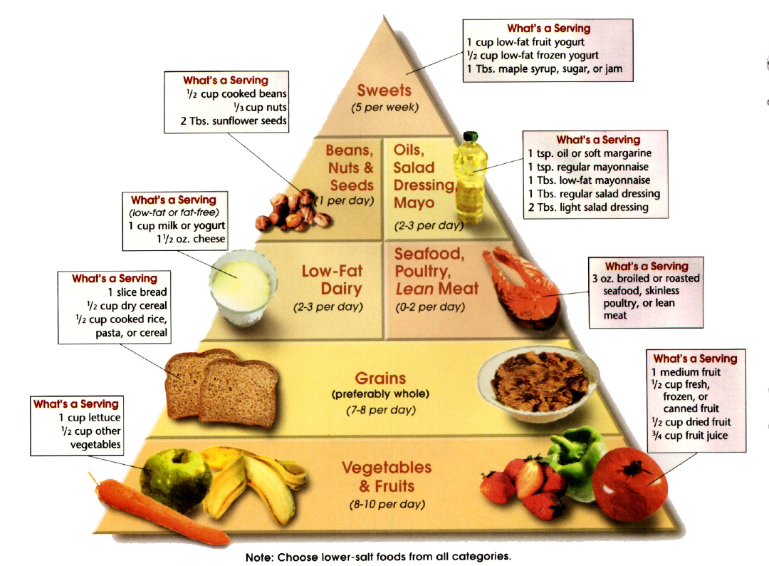 sports nutrition components of balanced diet What is nutrition nutrition is the intake of food, this is related to the body's dietary needs to have a healthy and nutritious diet you need to have a balanced amount of the five dietary components: fat, carbohydrates, proteins, vitamins and.