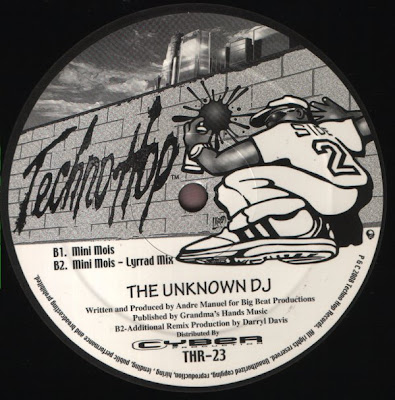 The Unknown DJ – This Is Electro / Mini Mois (VLS) (2008) (320 kbps)