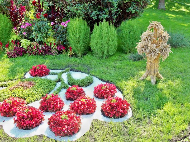 Киев.  Выставка цветов 2011 г. на Певческом поле.