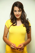 Diksha Panth Latest photos at Muse Art Gallery-thumbnail-1