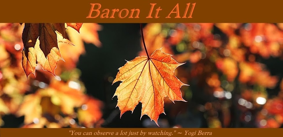 Baron It All