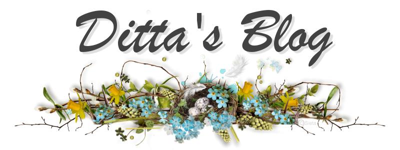 Ditta's blog