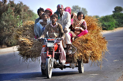 The farmers on motorcycle rickshaw loaded with rice crop, on the way at Larkana-Khairpur Road