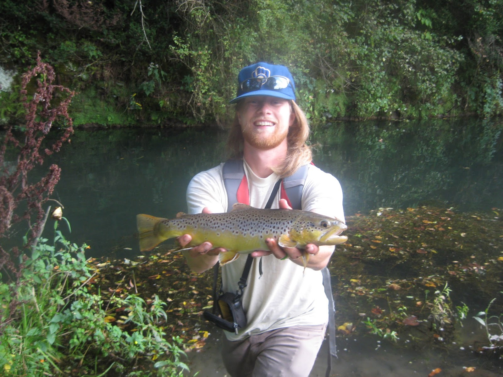 Minnesota Driftless Fly Fishing Trip Report First Day
