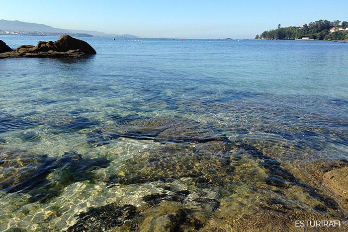 Día Mundial de los Océanos playa del con moaña