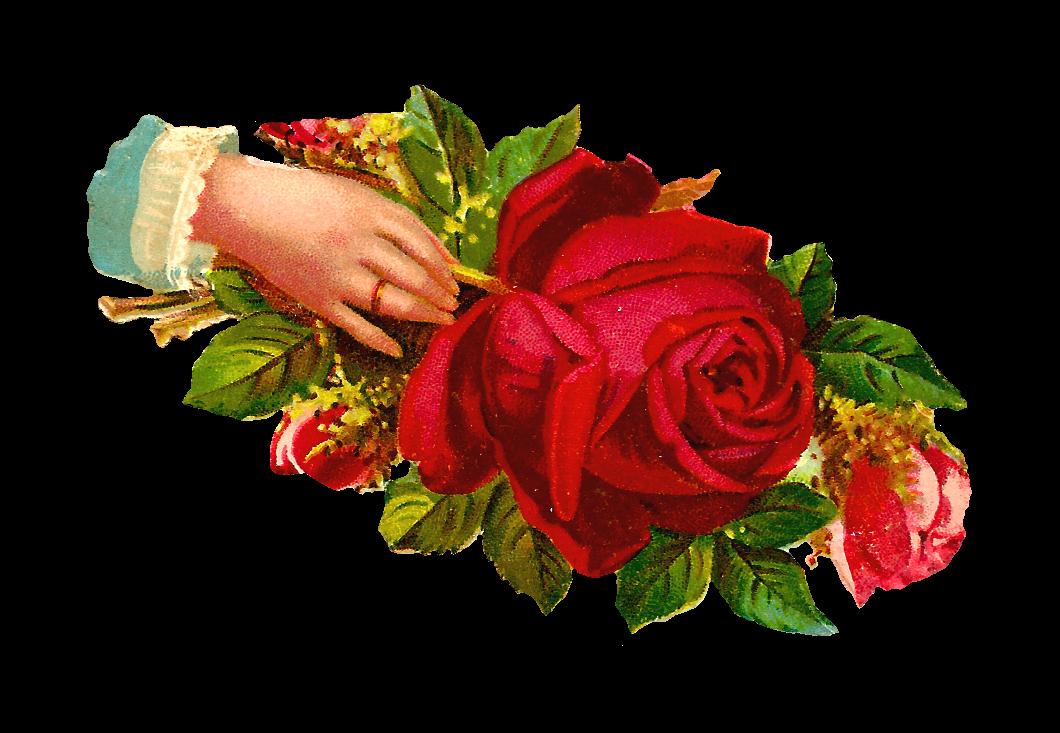 http://2.bp.blogspot.com/-AkIv7Gxxmps/VKW0mcUJasI/AAAAAAAAUo0/qWYg50CCu0k/s1600/scrap_hand_red_rose_ring_gmpng.png