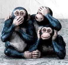 Tem Macaco Que è...