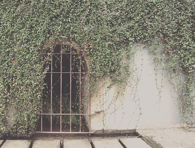 Waco Gate